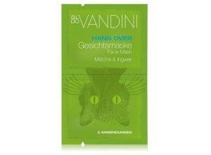 Aldo Vandini Hang Over Matcha & Ingwer Gesichtsmaske 15 ml