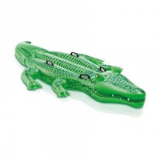 INTEX® Schwimmtier/Reittier Alligator