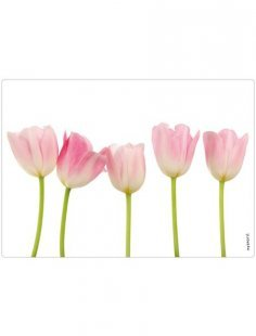 Spritzschutz »pop«, Tulpen, 59x41 cm