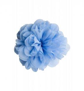 Ansteckblüte, hellblau