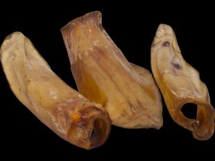 Hundesnack Rinderohren, 5 Stück