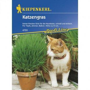 Katzengras Profi-Line