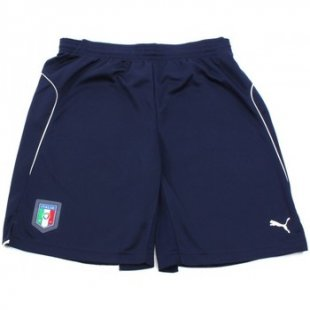 Puma Shorts FIGC TRAINING SHORT