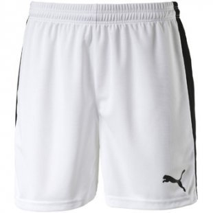 Puma Shorts Pitch Shorts Without Innerbrief