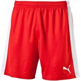 Puma Shorts indoor court short