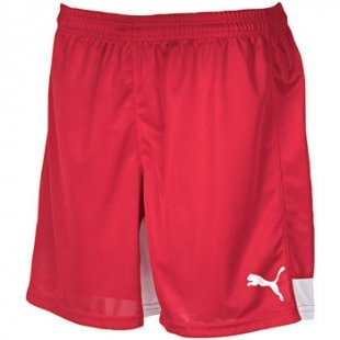 Puma Shorts Indoor Shorts