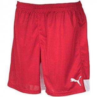 Puma Shorts Indoor Shorts