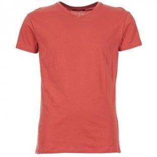BOTD T-Shirt ECALORA