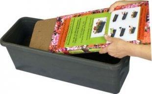 KokoTerra BlumenkastenFIX für Bewässerungsblumenkasten