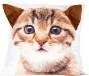 Tier Dekokissen Katze