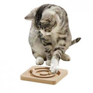 Karlie - Kitty Brain Train - Roundabout
