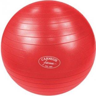 Carnegie Gymnastikball Ø 75 cm Massageball Fitnessball Sitzball 300 kg + Pumpe