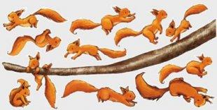 Wandtattoo Babyzimmer Einhörnchen, halt dich fest! Sticker Set