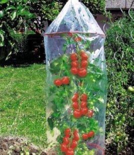 Tomaten-Reifehaube 3er-Set Tomatenhaube mit 2 Ringen 130 cm lang, 65 cm