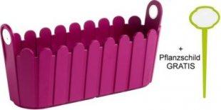 EMSA-Jardiniere pink plus Landhaus-Pflanzschild